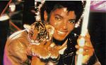 Thriller Era michael jackson 7917285 732 453